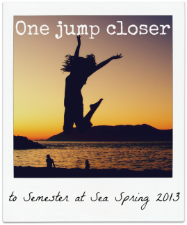 SAS jump for joy