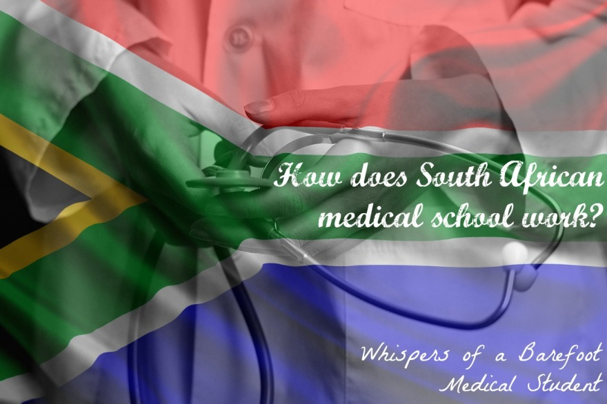 How does medical school in South Africa work?