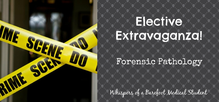 elective extravaganza forensic path