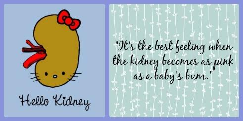 kidney quote