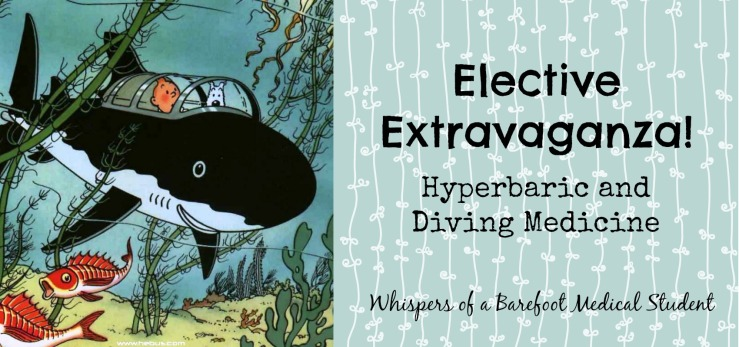 elective diving