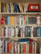 My bookcase - how else?